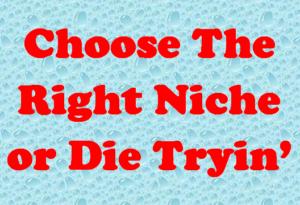 blog niche nigeria
